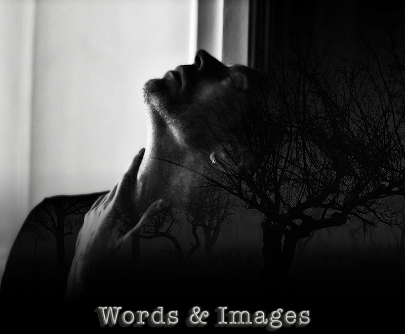 Peter X. Eriksson - Words & Images